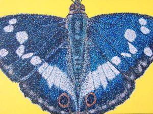 ljiljana barković leptir